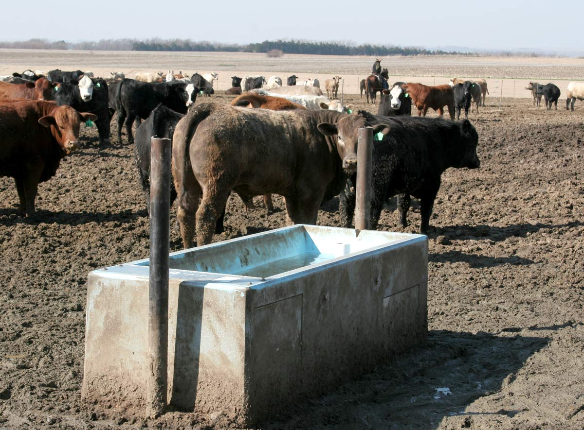Livestock Waterers